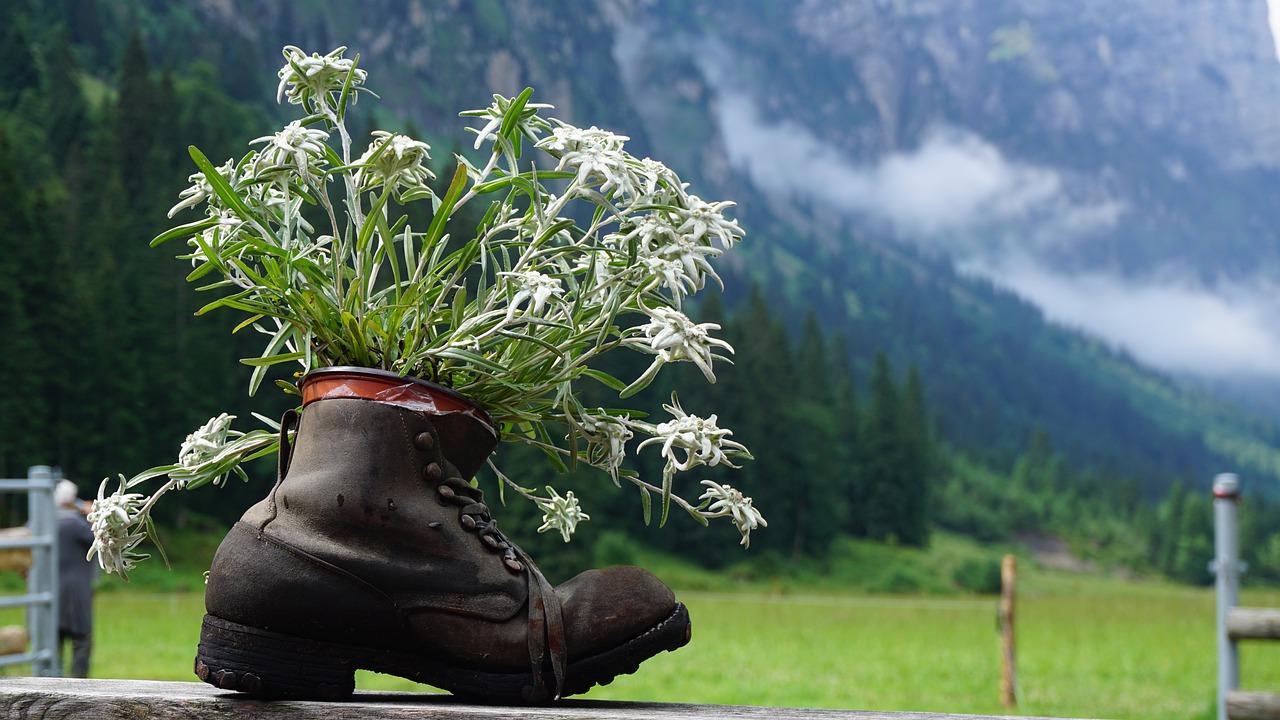 Buty trekkingowe Vibram na różne wyprawy